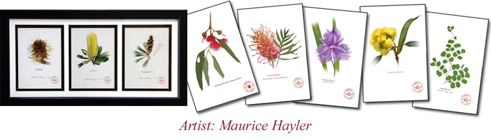 Artist Maurice Hayler